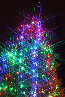 Poster featuring the photograph Star Like Christmas Lights by Patrice Zinck