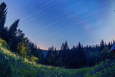 Poster featuring the photograph Star Trails by Jaroslaw Grudzinski