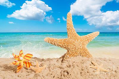 Starfish Poster by Amanda Elwell