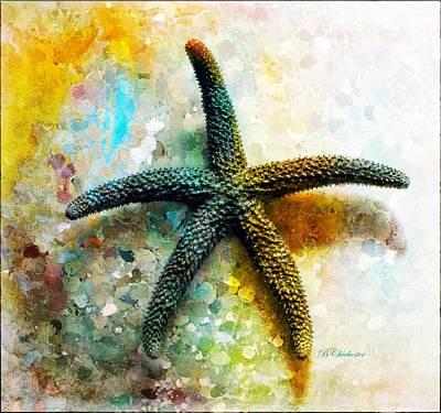 Starfish Impression Poster by Barbara Chichester