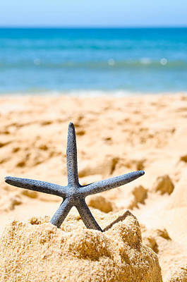 Starfish On Algarve Beach Portugal Poster