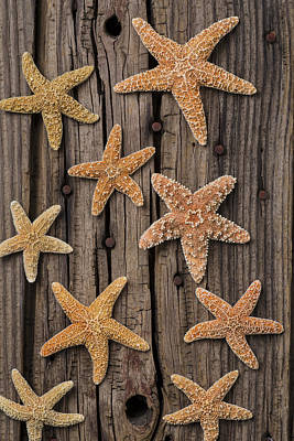 Starfish On Old Wood Poster