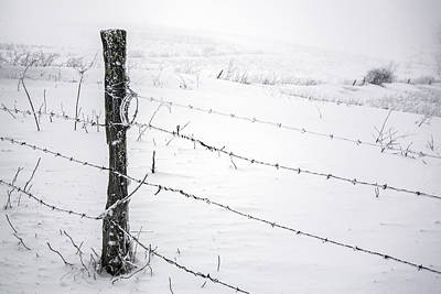 Stark Realities Of Winter Poster by John Haldane