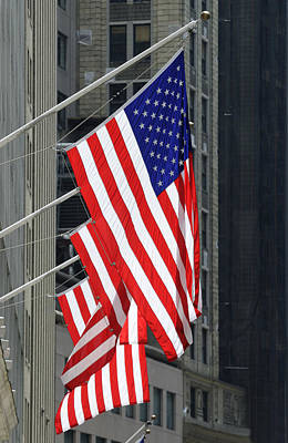 Stars And Stripes Flags Poster by Norman Pogson