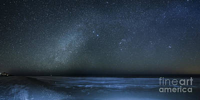Stars Over Cape San Blas Poster by Twenty Two North Photography
