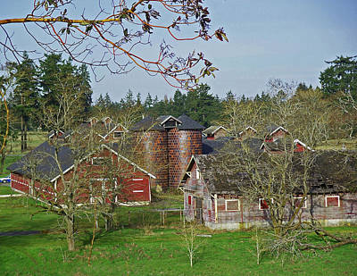 Steilacoom Park Barn And Silo's Poster