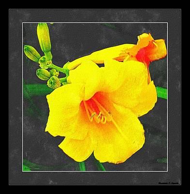 Stella Dora Day Lilies Poster