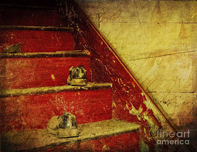 Poster featuring the photograph Step Back In Time by Debra Fedchin