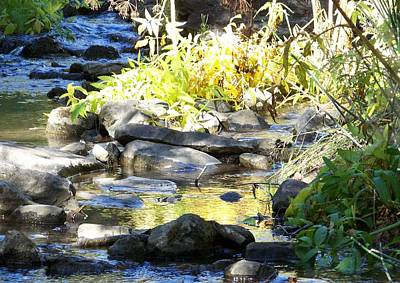 Poster featuring the photograph Stepping Stones by Sheri Keith