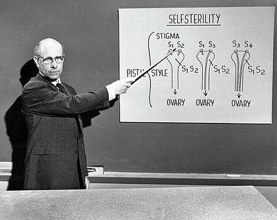 Stern Lectures On Self-sterility Poster by American Philosophical Society