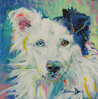 Stevie The Wonder Dog Poster