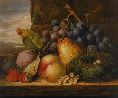 Still Life Grapes Pares Birds Nest Poster by Edward Ladell