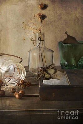Still Life With Grasshopper Poster by Elena Nosyreva