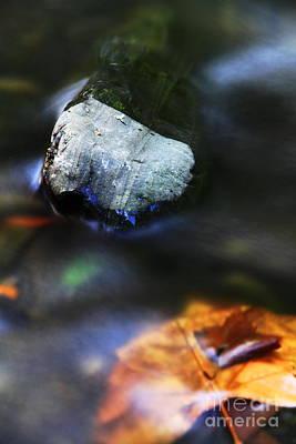 Poster featuring the photograph Stone by Mariusz Czajkowski