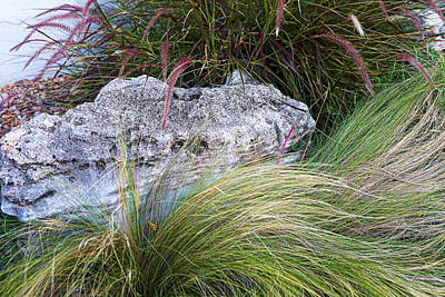 Stones With Flowing Grass Poster
