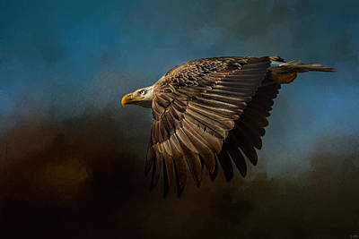 Storm Chaser - Bald Eagle Poster by Jai Johnson