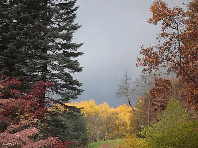 Storm In Hidden Gardens Poster by Bill Woodstock