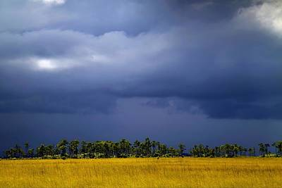 Storm Over The Everglades Poster