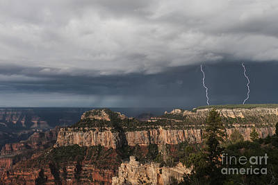 Storms At The Grand Canyon North Rim Poster by Sandra Bronstein