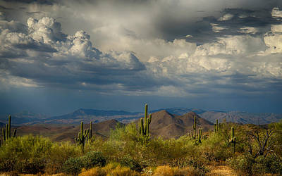 Storms Over The Sonoran Desert  Poster by Saija  Lehtonen
