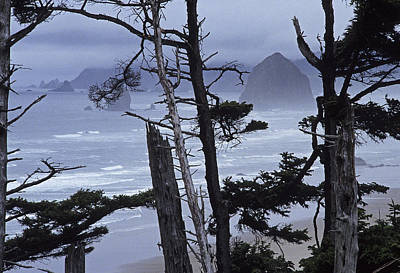 Stormy Cannon Beach Poster