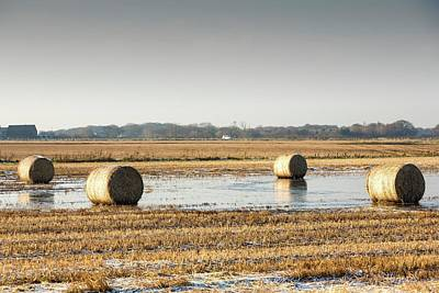 Straw Bales On Flooded Field Poster by Ashley Cooper