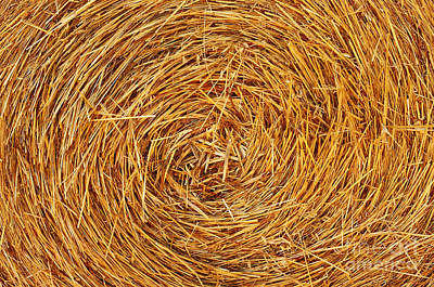Straw Texture Poster by Carlos Caetano