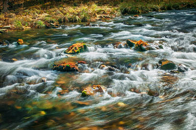 Stream Fall Colors Great Smoky Mountains Painted  Poster by Rich Franco