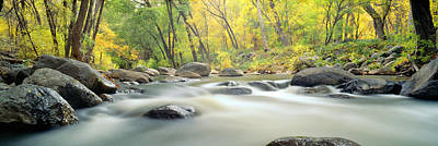 Stream In Cottonwood Canyon, Sedona Poster by Panoramic Images