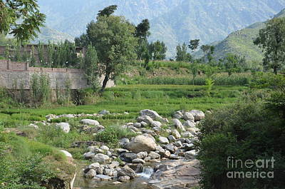 Stream Trees House And Mountains Swat Valley Pakistan Poster
