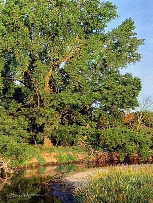 Streamside Cottonwood Poster