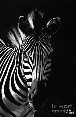 Striped Beauty Poster by Sheryl Unwin