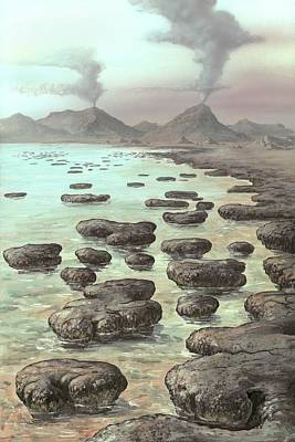 Stromatolites Poster by Richard Bizley