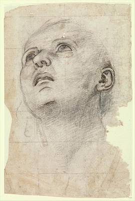 Study Of The Head Of A Youth Gazing Poster by Workshop of Perugino