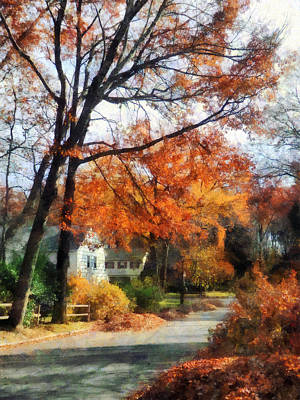 Suburban Street In Autumn Poster by Susan Savad