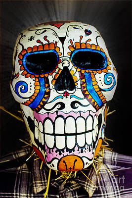Sugar Skull Scarecrow Poster by Tom Gari Gallery-Three-Photography