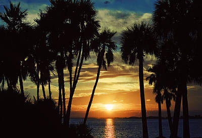 Poster featuring the photograph Sultry Sunset by Janie Johnson