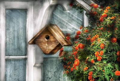 Summer - Birdhouse - The Birdhouse Poster by Mike Savad