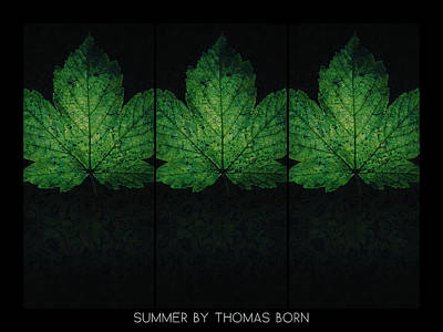 Poster featuring the photograph Summer By Thomas Born by Thomas Born