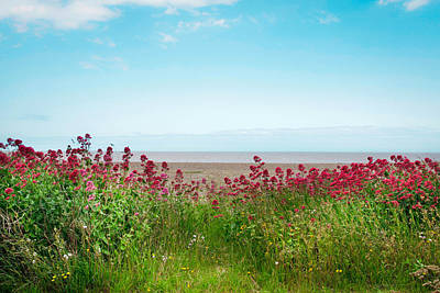 Summer Coastal Scene Poster