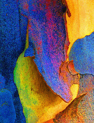 Summer Eucalypt Abstract 11 Poster by Margaret Saheed