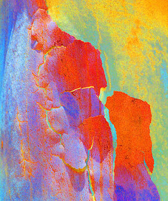 Summer Eucalypt Abstract 22 Poster by Margaret Saheed