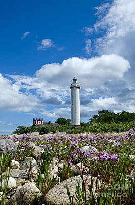 Poster featuring the photograph Summer Flowers At Lighthouse by Kennerth and Birgitta Kullman