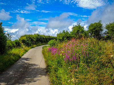 Summer Flowers On Irish Country Road Poster