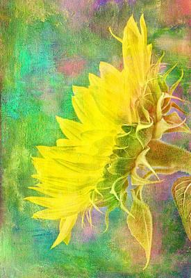 Summer Garden Sunflower Poster by Robert Jensen