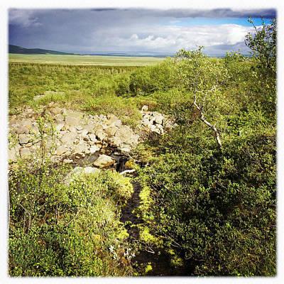 Summer Landscape In Iceland Poster