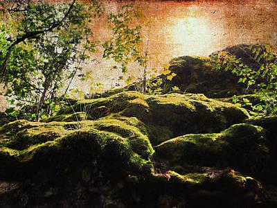 Summer Moss Poster