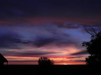 Summer Sunrise In Colorado Poster