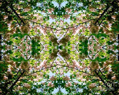 Summer Symmetry Poster
