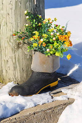 Summerside Rubber Boot Garden Poster by Verena Matthew